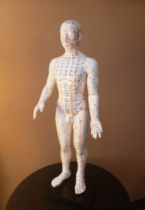 Acupuncture figure front